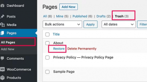 all pages within your WordPress admin area